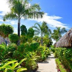 Отель Village Temanuata Французская Полинезия, Бора-Бора - отзывы, цены и фото номеров - забронировать отель Village Temanuata онлайн фото 8