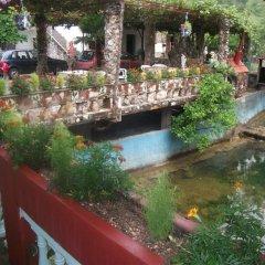 Апартаменты Radonjic Apartments Апартаменты с различными типами кроватей фото 9
