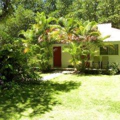 Отель Pacific Treelodge Resort Федеративные Штаты Микронезии, Косраэ - отзывы, цены и фото номеров - забронировать отель Pacific Treelodge Resort онлайн фото 5