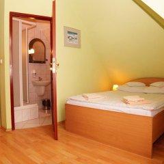 Отель Halny Pensjonat 2* Стандартный номер фото 8
