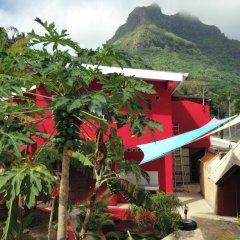 Отель Sunset Hill Lodge Французская Полинезия, Бора-Бора - отзывы, цены и фото номеров - забронировать отель Sunset Hill Lodge онлайн фото 8
