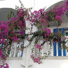 Отель Villa Kamari Star фото 4