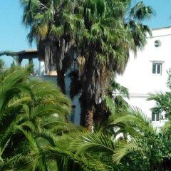 Отель El Olivar de Roche Viejo Испания, Кониль-де-ла-Фронтера - отзывы, цены и фото номеров - забронировать отель El Olivar de Roche Viejo онлайн фото 6
