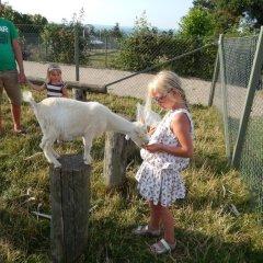 Отель Skovlund Camping & Cottages Боркоп детские мероприятия фото 2