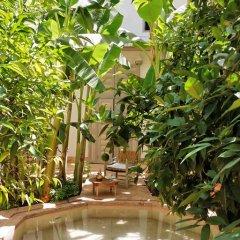 Отель Le Riad Berbere Марокко, Марракеш - отзывы, цены и фото номеров - забронировать отель Le Riad Berbere онлайн бассейн