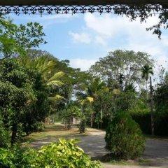 Отель Hansika Guest Inn Шри-Ланка, Бандаравела - отзывы, цены и фото номеров - забронировать отель Hansika Guest Inn онлайн фото 6