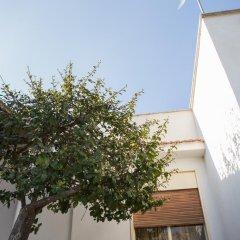 Отель Amalia Siino delle Rose Италия, Чинизи - отзывы, цены и фото номеров - забронировать отель Amalia Siino delle Rose онлайн фото 4