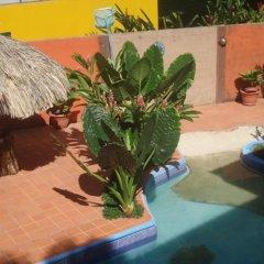 Hotel El Encanto De Dona Lidia Луизиана Ceiba фото 2