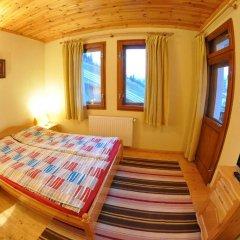 Eco House Family Hotel Чепеларе комната для гостей фото 4