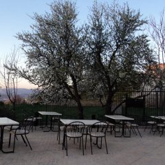 Отель La Encina Centenaria фото 6