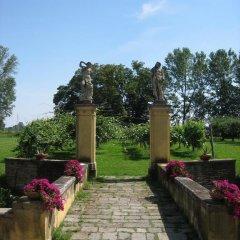 Отель Agriturismo Villa Selvatico Италия, Вигонца - отзывы, цены и фото номеров - забронировать отель Agriturismo Villa Selvatico онлайн фото 12