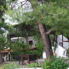 Отель Para Thin Alos Греция, Ситония - отзывы, цены и фото номеров - забронировать отель Para Thin Alos онлайн фото 31