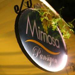 Mimosa Pension Турция, Каш - отзывы, цены и фото номеров - забронировать отель Mimosa Pension онлайн банкомат