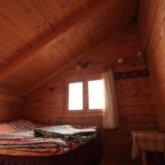Pokut Doğa Konukevi Стандартный номер с двуспальной кроватью фото 2