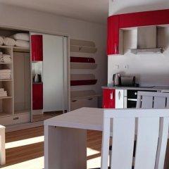Апартаменты Tes Rila Park & Semiramida Apartments Студия фото 16