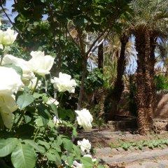 Отель Riad Tabhirte фото 9