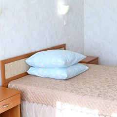 Гостиница Родина Стандартный номер с различными типами кроватей фото 20