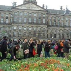 Отель Manikomio Нидерланды, Амстердам - отзывы, цены и фото номеров - забронировать отель Manikomio онлайн фото 4