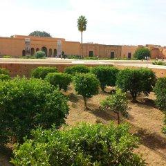 Отель Riad Bel Haj Марокко, Марракеш - отзывы, цены и фото номеров - забронировать отель Riad Bel Haj онлайн фото 3