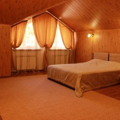 Sofiya Mini Hotel комната для гостей фото 3