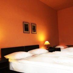 Hotel Branik 3* Стандартный номер с различными типами кроватей
