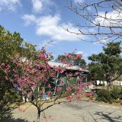 Tomarigi - Hostel Якусима фото 7