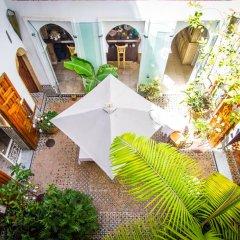 Отель Dar Mayssane Марокко, Рабат - отзывы, цены и фото номеров - забронировать отель Dar Mayssane онлайн питание фото 2