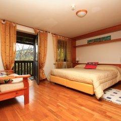 Отель Borgo degli Elfi Италия, Саурис - отзывы, цены и фото номеров - забронировать отель Borgo degli Elfi онлайн комната для гостей фото 4