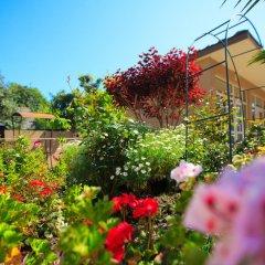Гостиница Margo Guest House в Адлере отзывы, цены и фото номеров - забронировать гостиницу Margo Guest House онлайн Адлер