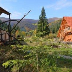 Отель Domik v Gorakh Guest House Поляна детские мероприятия