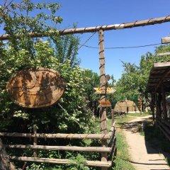 Отель Turkestan Yurt Camp Кыргызстан, Каракол - отзывы, цены и фото номеров - забронировать отель Turkestan Yurt Camp онлайн фото 9