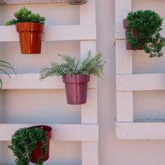 Quinta dos Poetas Nature Hotel & Apartments интерьер отеля