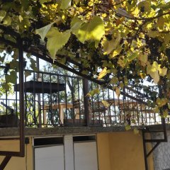 Гостиница Azanta Guest House фото 10