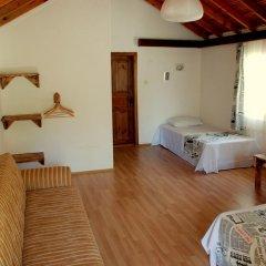 Гостевой Дом Dionysos Lodge Стандартный номер с двуспальной кроватью фото 10