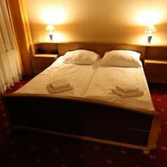Hotel Palacký 3* Стандартный номер с двуспальной кроватью фото 5