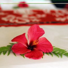 Отель Garden Island Resort Фиджи, Остров Тавеуни - отзывы, цены и фото номеров - забронировать отель Garden Island Resort онлайн помещение для мероприятий фото 2