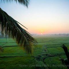 Отель Heaven Upon Rice Fields Шри-Ланка, Анурадхапура - отзывы, цены и фото номеров - забронировать отель Heaven Upon Rice Fields онлайн пляж