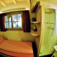 Отель Chalet Weidhaus Ferienwohnung & Zimmer Стандартный номер с различными типами кроватей