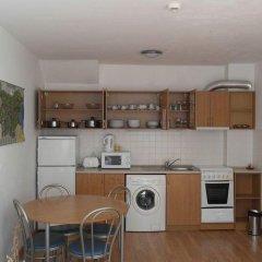 Апартаменты Christina Apartment In Laplandia Пампорово в номере