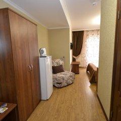 Гостиница Мишель удобства в номере фото 2