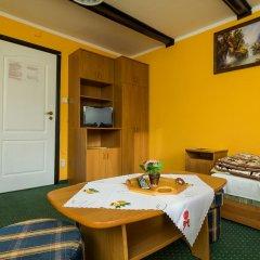 Отель Willa Marysieńka Стандартный номер фото 12