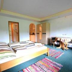 Апартаменты Auhof Apartments Стандартный номер с различными типами кроватей фото 2