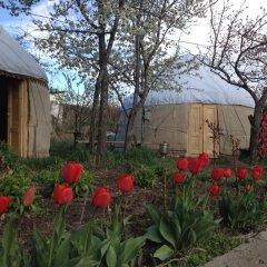 Отель B&B at Bailanysh Кыргызстан, Каракол - отзывы, цены и фото номеров - забронировать отель B&B at Bailanysh онлайн фото 9