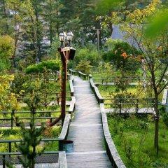 Отель Swiss Pension Южная Корея, Пхёнчан - отзывы, цены и фото номеров - забронировать отель Swiss Pension онлайн приотельная территория фото 2