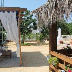 """Отель Alojamiento Rural """"El Charco del Sultan"""" Испания, Кониль-де-ла-Фронтера - отзывы, цены и фото номеров - забронировать отель Alojamiento Rural """"El Charco del Sultan"""" онлайн фото 6"""