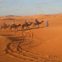 Отель Dar Tafouyte Марокко, Мерзуга - отзывы, цены и фото номеров - забронировать отель Dar Tafouyte онлайн приотельная территория