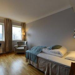 Отель GamlaVærket Gjæstgiveri og Tracteringssted 3* Стандартный номер с различными типами кроватей