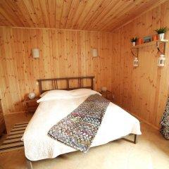 Гостиница Usadba Стандартный номер разные типы кроватей фото 12