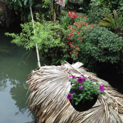 Отель Ta Phin Stone Garden Ecological Вьетнам, Шапа - отзывы, цены и фото номеров - забронировать отель Ta Phin Stone Garden Ecological онлайн