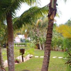 Отель Villa Tulum Hotel Италия, Рим - отзывы, цены и фото номеров - забронировать отель Villa Tulum Hotel онлайн фото 13
